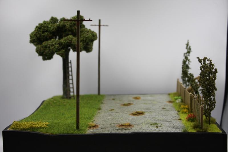 Les Taxis de la Marne diorama au 1/35 ème - Page 5 Img_6730