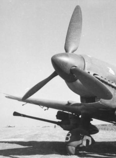 Junker Ju 87-A Stuka 1/24 - Page 13 Stuka_16