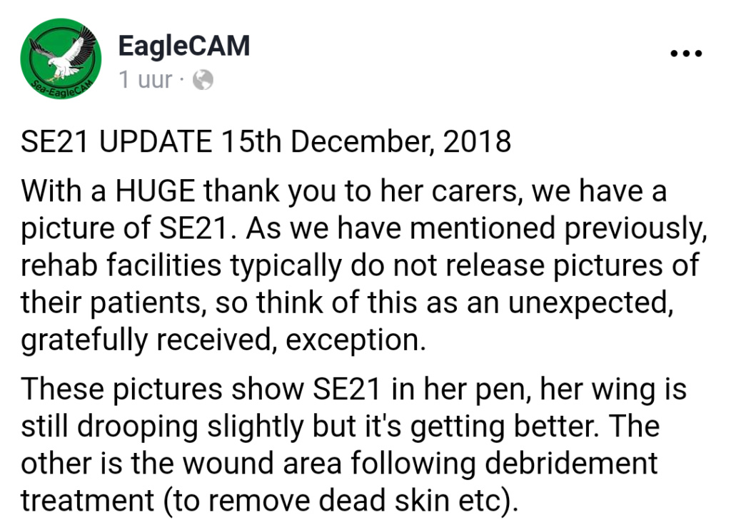 Sidney Sea-Eagle cam. - Pagina 9 Screen13