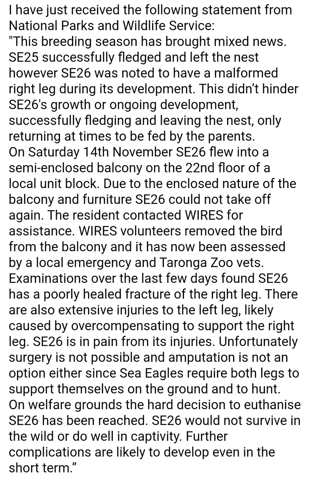 Sidney Sea-Eagle cam. - Pagina 12 Screen33