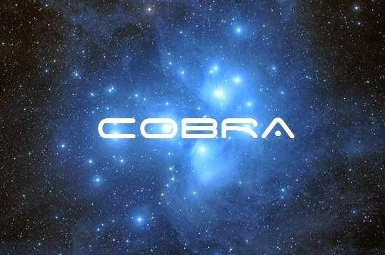 Кобра: Цветок Жизни Cobrap10