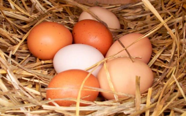Чистка ауры яйцом Chistk10