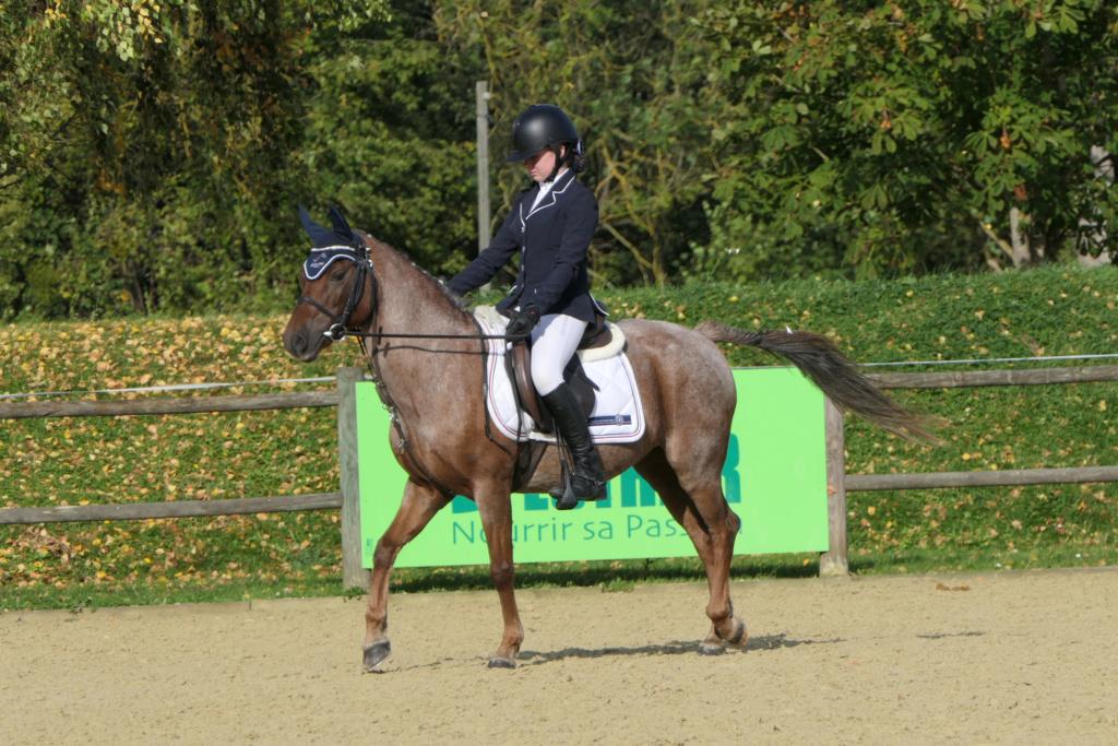 Conseil réglage FZ2000 pour photo équitation saut d'obstacles Lou-dr10