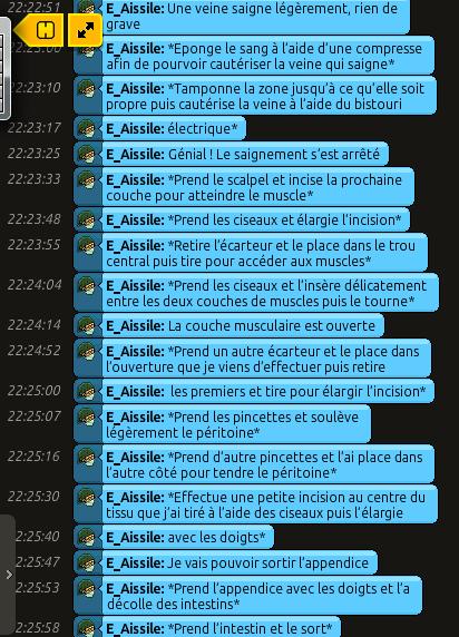 [C.H.U] Rapports d'actions RP de E_Aissile Ra_615