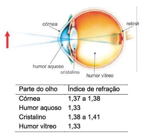 Olho humano e conceitos de ótica 110