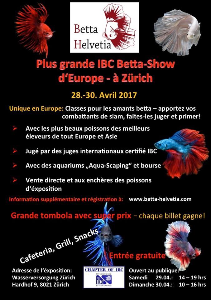 Betta Show Zürich, Suisse, 29-30 avril 2017, CONGRES IBC-EUROPE ! 16790610
