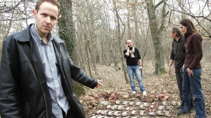 Alsace : Après la battue, des chasseurs crient au scandale ! Paul-s10