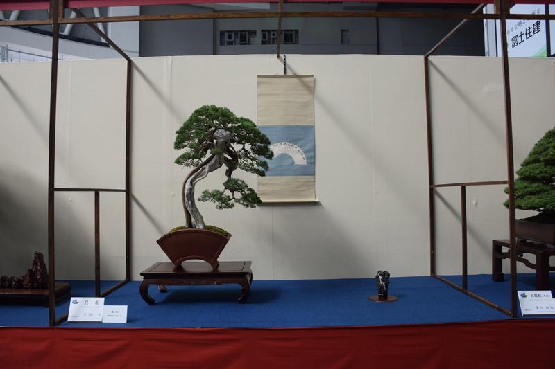 The 8th World Bonsai Convention, SAITAMA CITY - Page 2 Dsc_0266