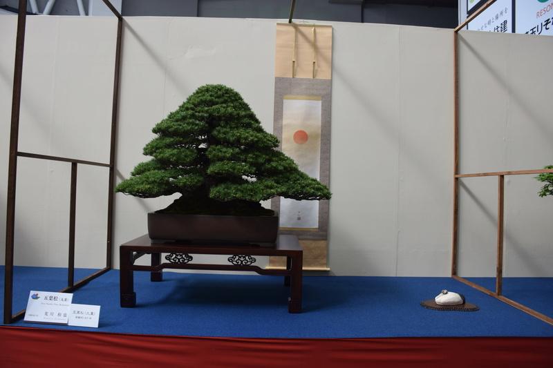 The 8th World Bonsai Convention, SAITAMA CITY - Page 2 Dsc_0267