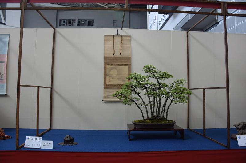 The 8th World Bonsai Convention, SAITAMA CITY - Page 2 Dsc_0270