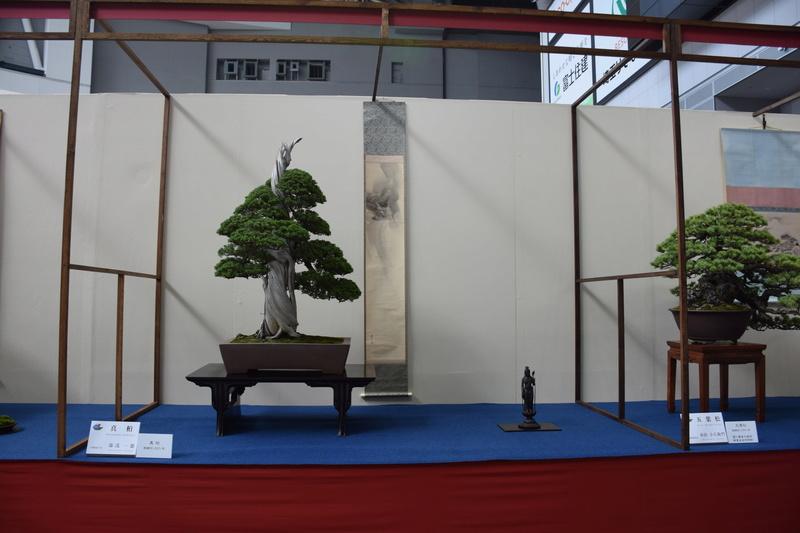 The 8th World Bonsai Convention, SAITAMA CITY - Page 2 Dsc_0271