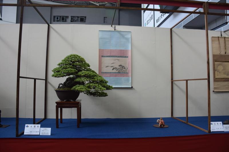 The 8th World Bonsai Convention, SAITAMA CITY - Page 2 Dsc_0272