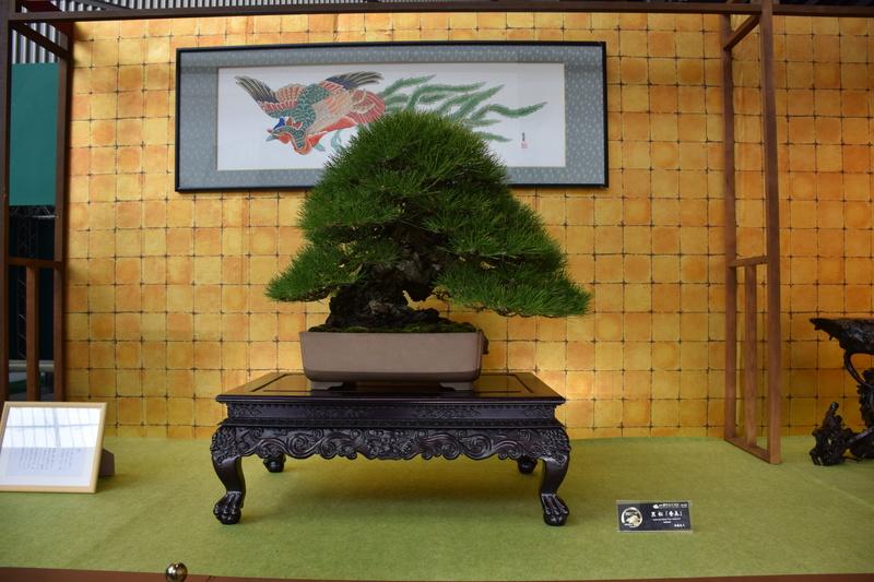 The 8th World Bonsai Convention, SAITAMA CITY - Page 2 Dsc_0283