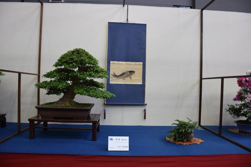 The 8th World Bonsai Convention, SAITAMA CITY - Page 2 Dsc_0301