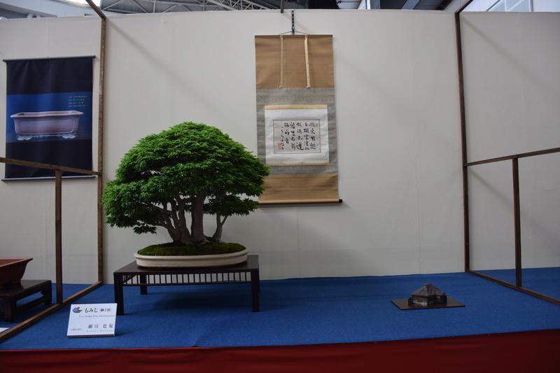 The 8th World Bonsai Convention, SAITAMA CITY - Page 2 Dsc_0409