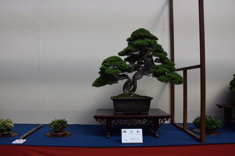 The 8th World Bonsai Convention, SAITAMA CITY - Page 2 Dsc_0585