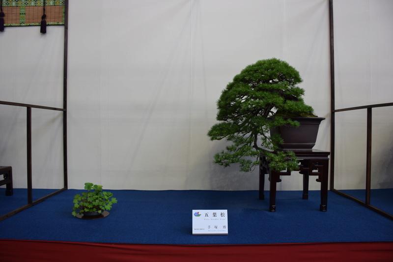 The 8th World Bonsai Convention, SAITAMA CITY - Page 2 Dsc_0679