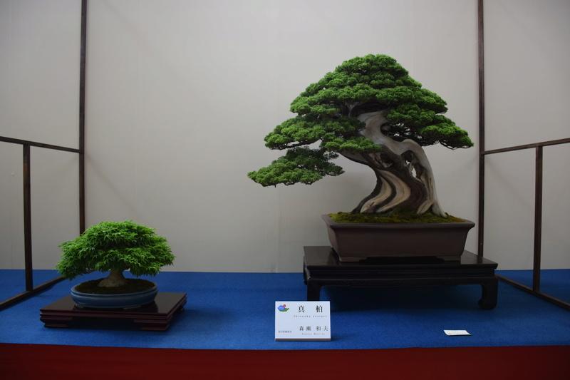 The 8th World Bonsai Convention, SAITAMA CITY - Page 2 Dsc_0685