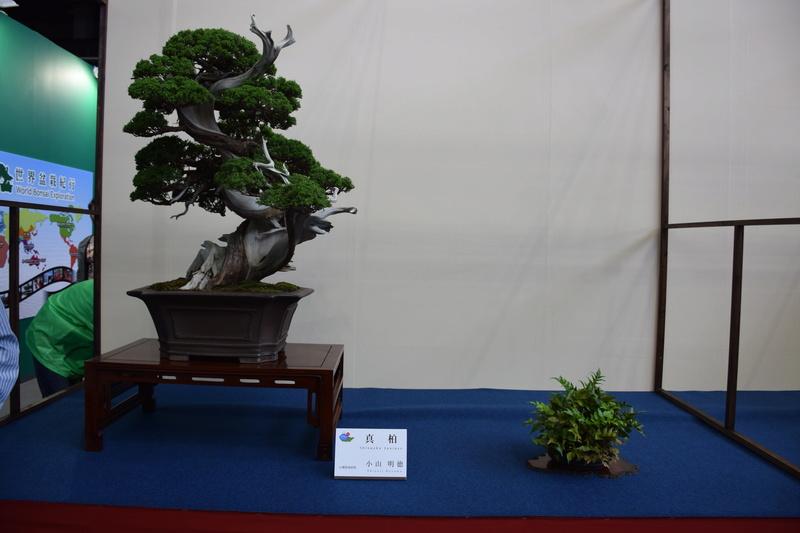 The 8th World Bonsai Convention, SAITAMA CITY - Page 2 Dsc_0697