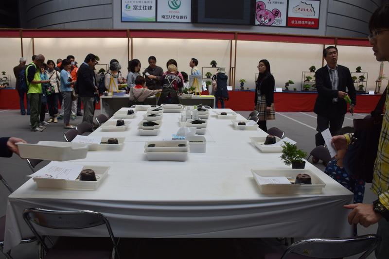 The 8th World Bonsai Convention, SAITAMA CITY - Page 2 Dsc_0901