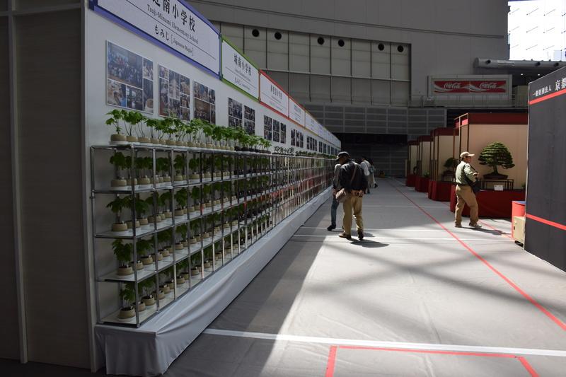 The 8th World Bonsai Convention, SAITAMA CITY - Page 2 Dsc_0959