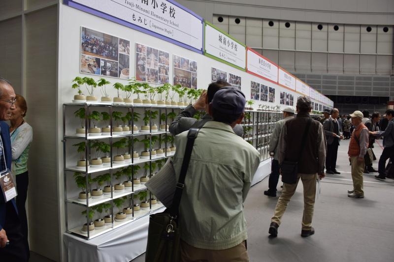The 8th World Bonsai Convention, SAITAMA CITY - Page 2 Dsc_0960