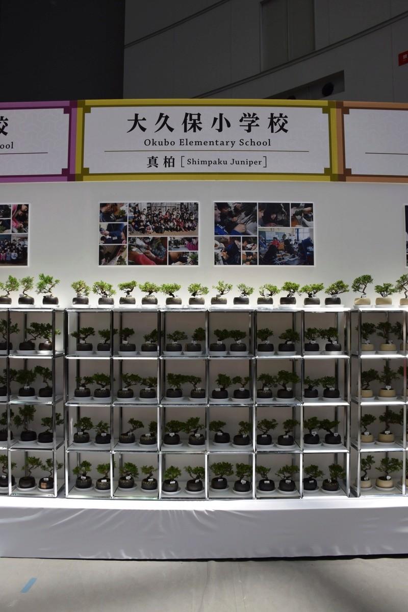 The 8th World Bonsai Convention, SAITAMA CITY - Page 2 Dsc_0961