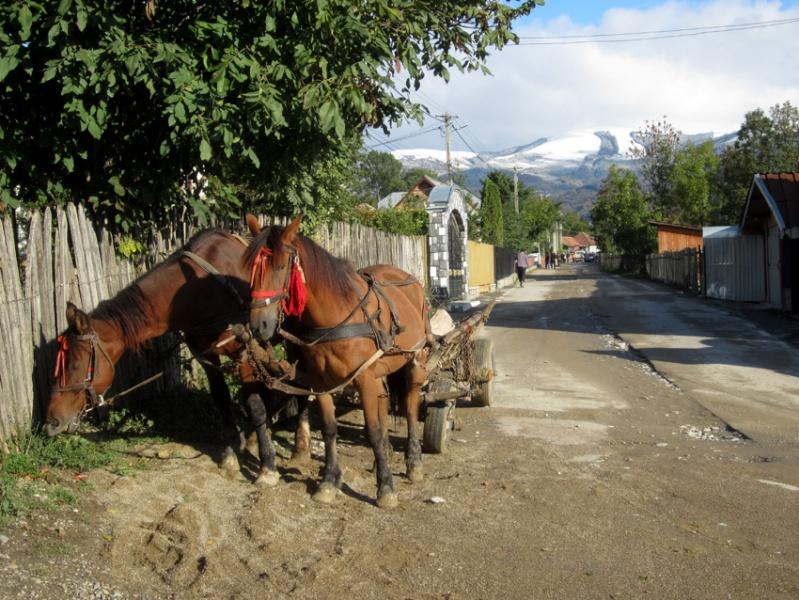 Voyage de Lucuts en Roumanie (31e)  13100310