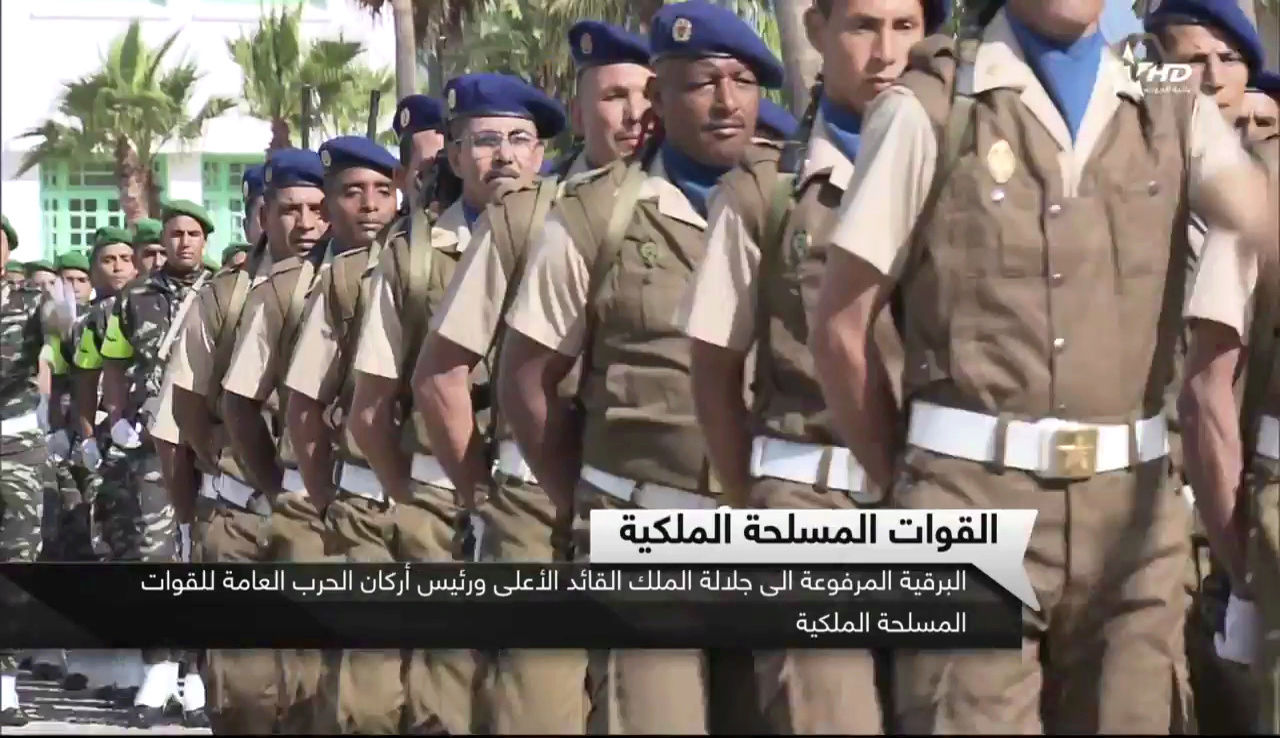 BLS - Brigade Légère de Sécurité Vlcsna10