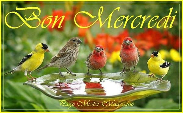 Bonjour - Page 6 10035810
