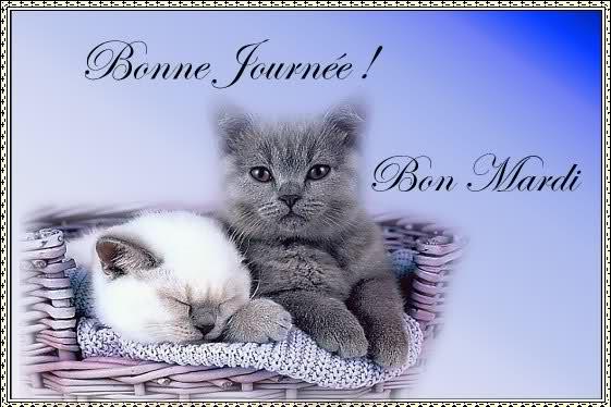 Bonjour - Page 38 77j8ec10