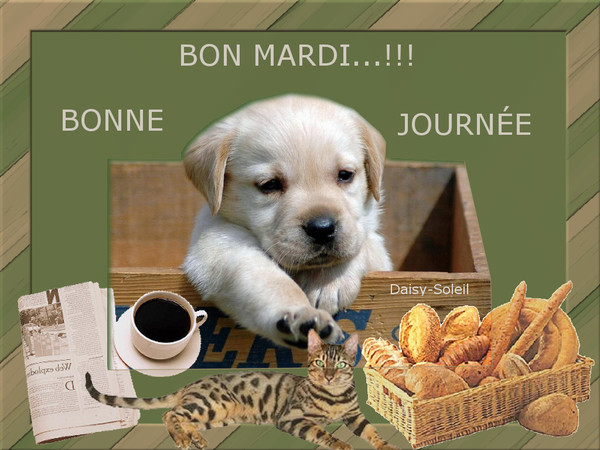 Bonjour - Page 3 Denise10