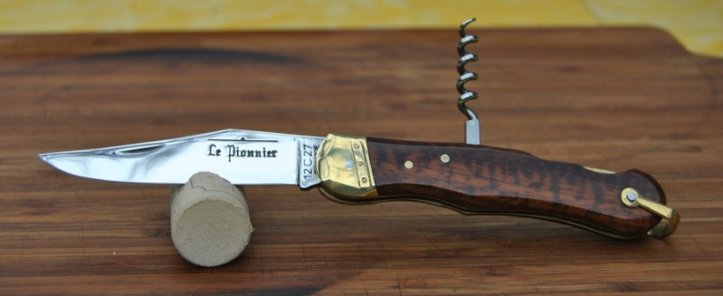 Couteaux gaulois Pionni13