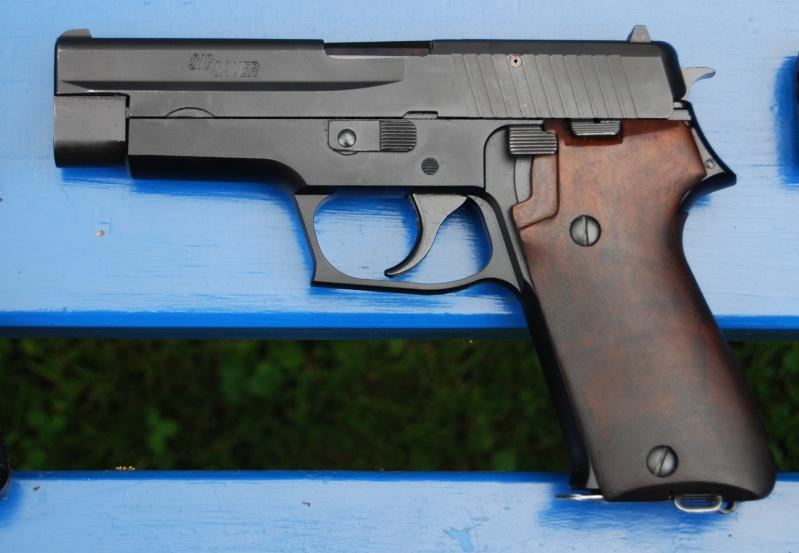 Plaquettes bois P75/P220 ex-armée Sarie210
