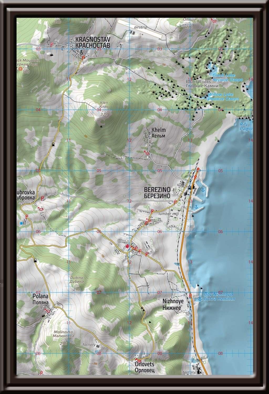 MAP DayZ  Cartes10