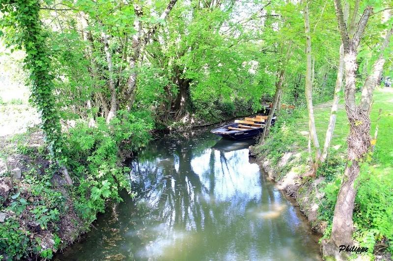 Marais Poitevin 718a1213