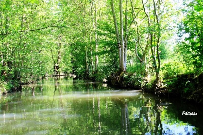 Marais Poitevin 718a1613