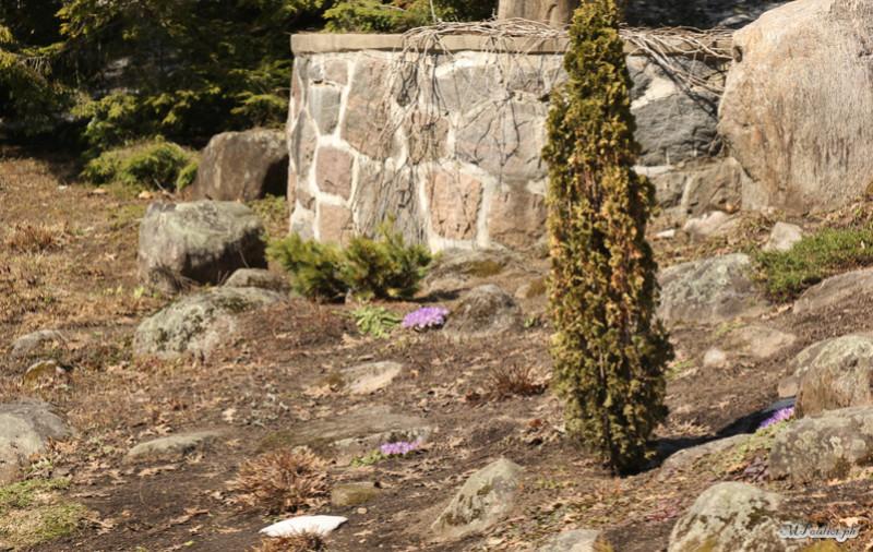 Par un bel après midi ensoleillé Domaine Maizeret & ancien zoo Img_8915