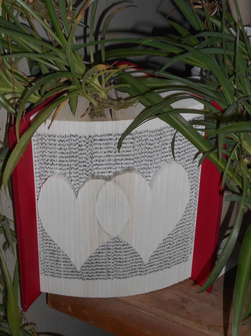 Pliage de livres - Page 3 Dscn0610