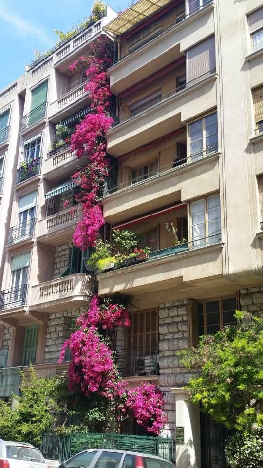 Coté jardin 17021810