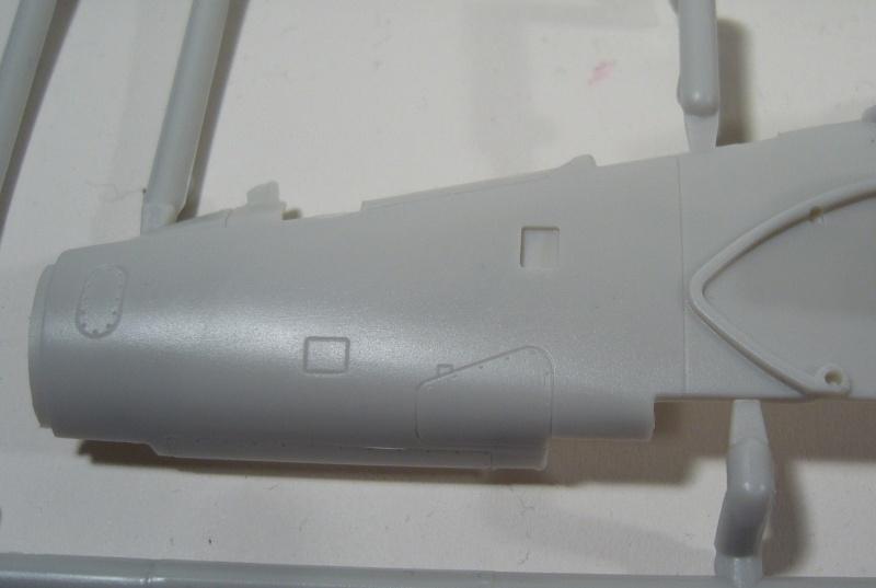 AlphaJet Kinetic 1/48 P1050035