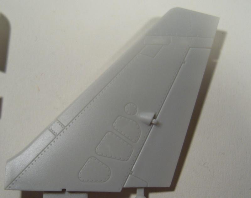 AlphaJet Kinetic 1/48 P1050040