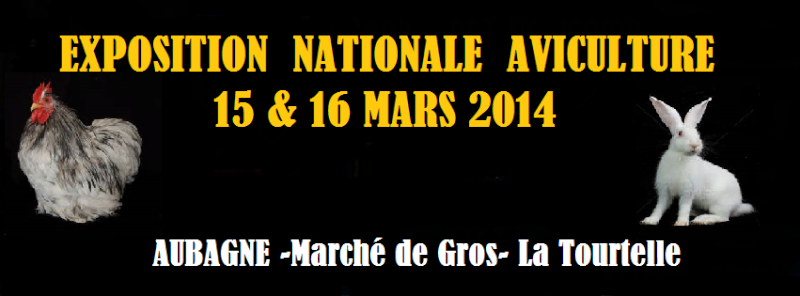 EXPOSITION AVICOLE AUBAGNE 15 & 16 MARS 2014 Azer10