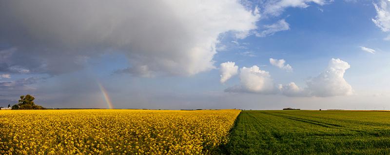 Vers quelques orages de printemps? Panora10