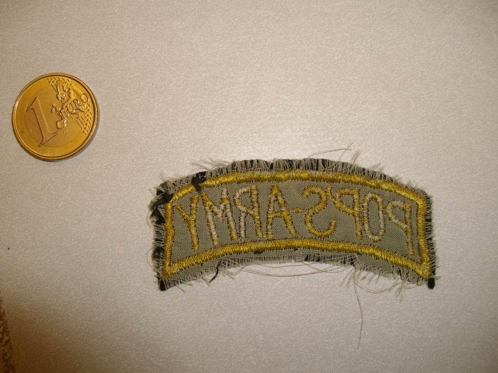 Patch de bras à identifier Imgp0025