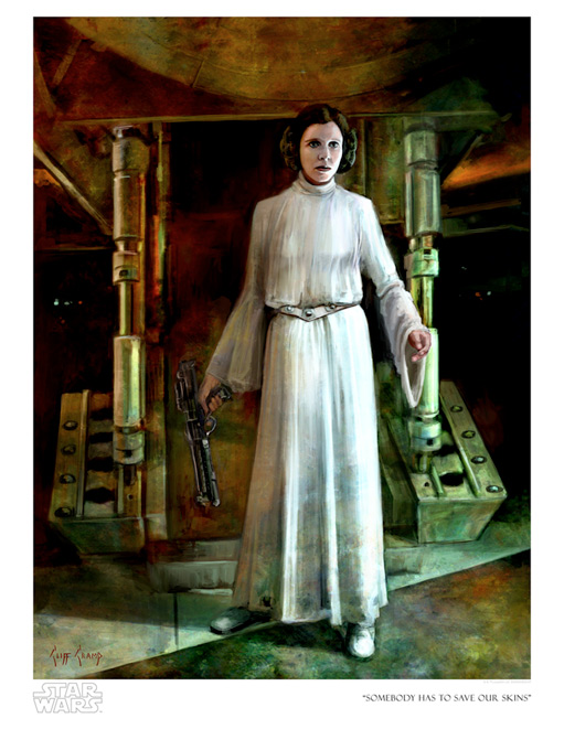 Artwork Star Wars A New Hope - ACME - Somebody Has to ... Swanh810