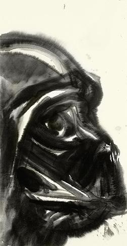 Artwork Star Wars - ACME - Darth Vader Swotlt10