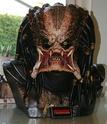 besoin d'aide pour mon buste predator 1:1 3010