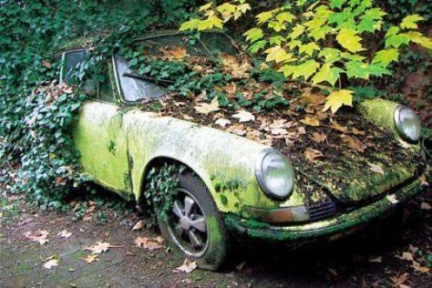 Photos de Porsche à restaurer - Page 4 17458011