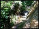 Album photo de mes vacances : Pyrénées Orientales (66) Image_50